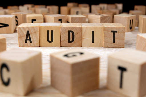 Challenges of Being an Auditor